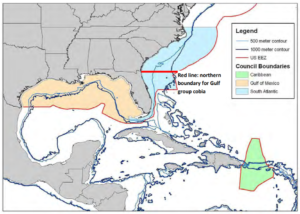 Cobia Boundary Map