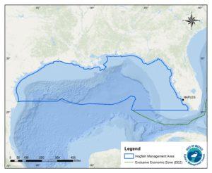 Region map Gulf Hogfish