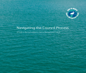 Navigating the Council Process 12 14 12 1