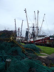 Shrimp Boats - Pic