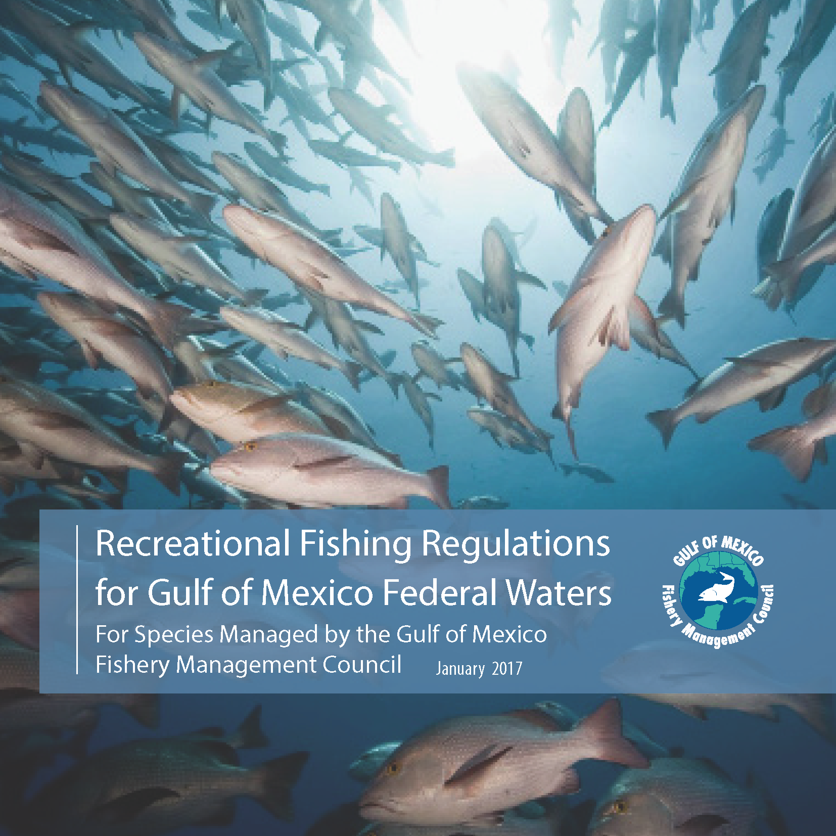 recregs 2017 05 17 update 1 gulf of mexico fishery